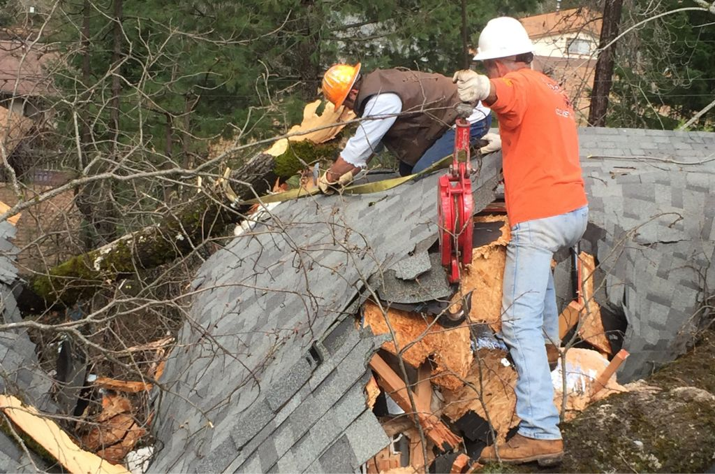 Timber Warriors Members removing tree from roof with crane